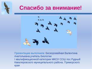 Спасибо за внимание! Презентацию выполнила: Бескоровайная Валентина Анатольев