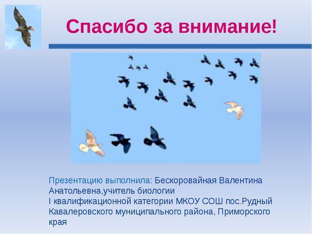 Спасибо за внимание! Презентацию выполнила: Бескоровайная Валентина Анатольев...