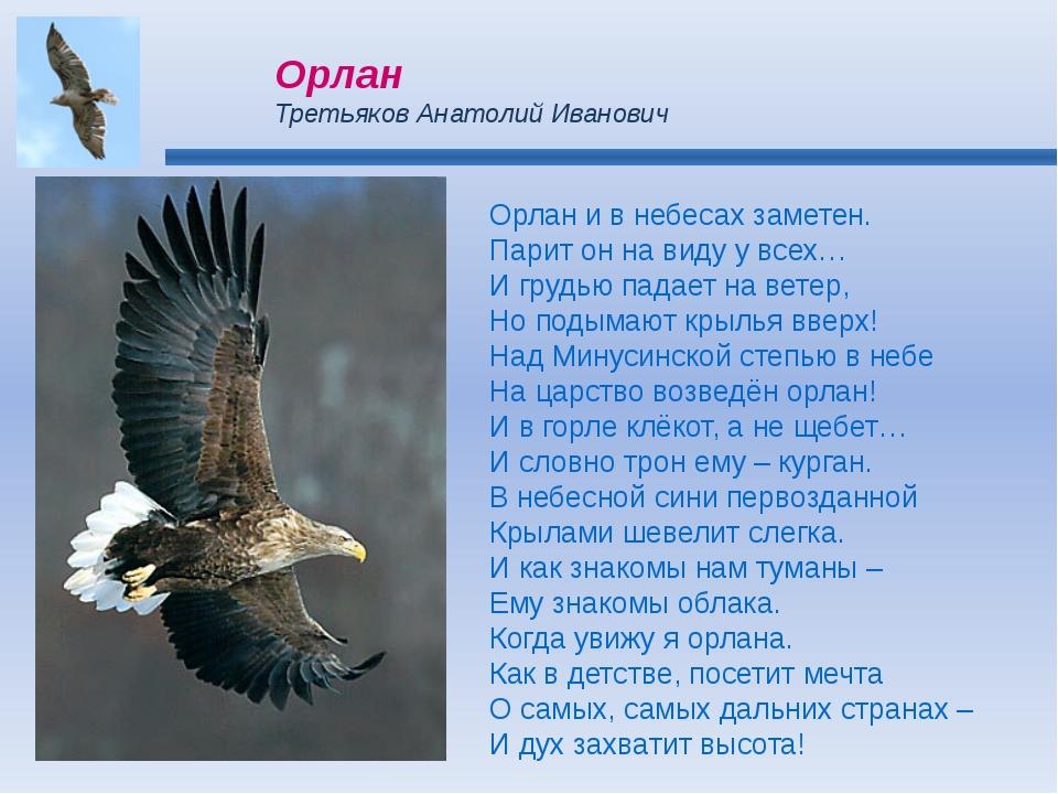 Орлан и в небесах заметен. Парит он на виду у всех… И грудью падает на ветер,...