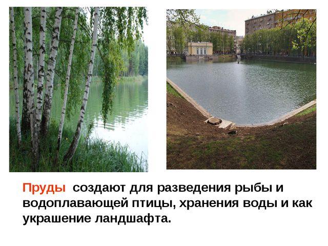 Море. Пруды создают для разведения рыбы и водоплавающей птицы, хранения воды...