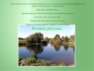 Река Теша берет начало в Лукояновском районе на юге области, на Приволжской в