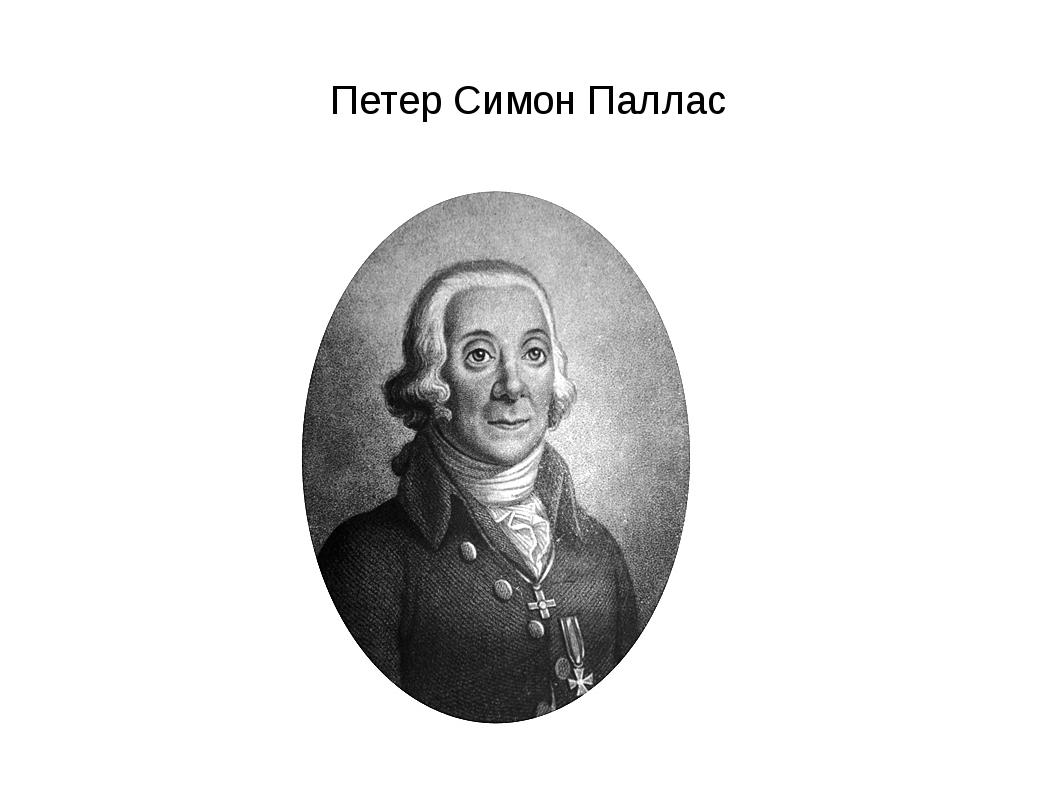 Петер Симон Паллас