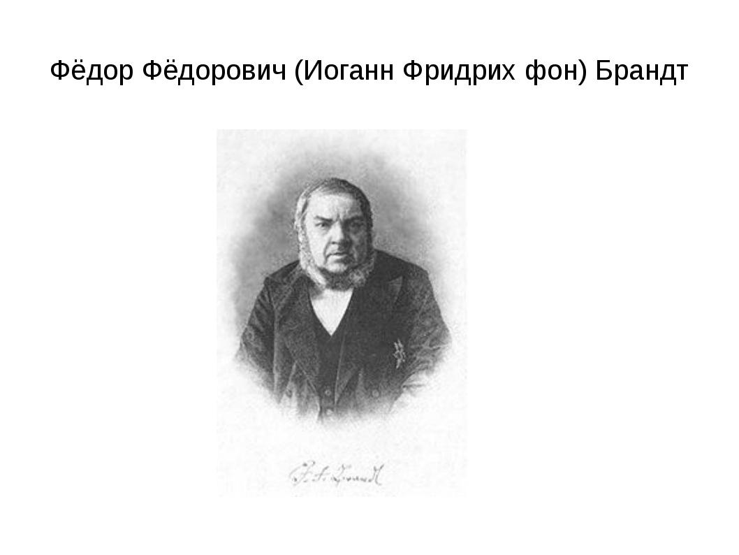 Фёдор Фёдорович (Иоганн Фридрих фон) Брандт