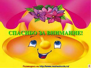 Размещено на http://www.nashashcola.ru/ СПАСИБО ЗА ВНИМАНИЕ!