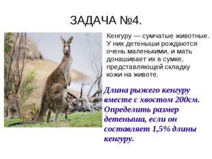ЗАДАЧА №4. Кенгуру — сумчатые животные. У них детеныши рождаются очень малень