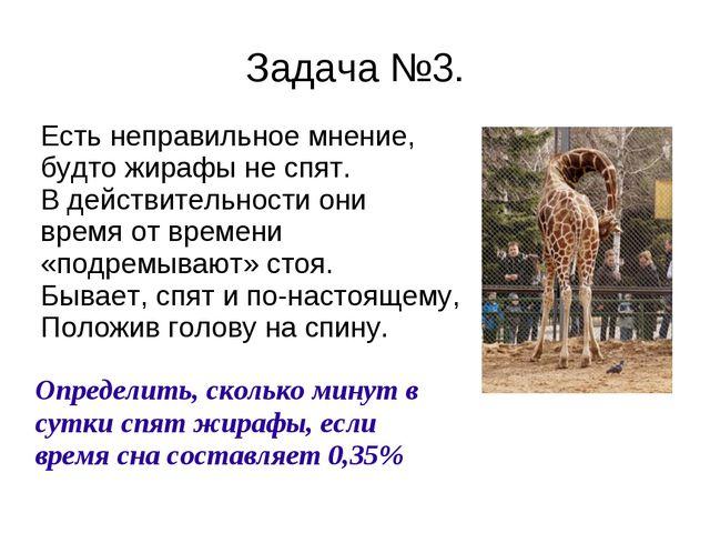 Задача №3. Есть неправильное мнение, будто жирафы не спят. В действительности...