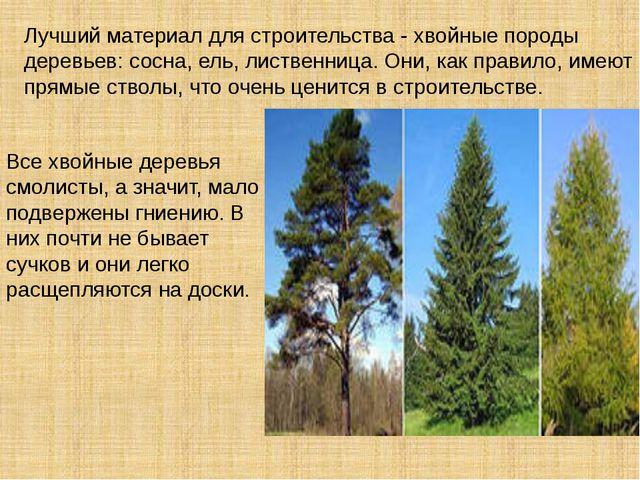 Лучший материал для строительства - хвойные породы деревьев: сосна, ель, лис...