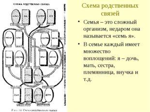 Схема родственных связей Семья – это сложный организм, недаром она называется