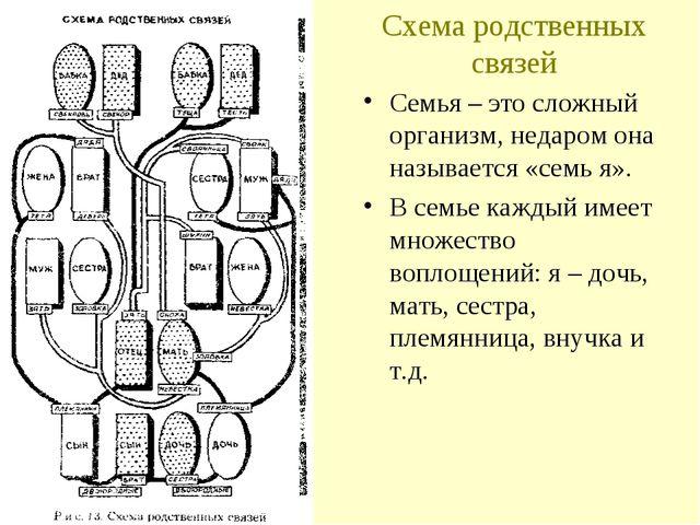Схема родственных связей Семья – это сложный организм, недаром она называется...