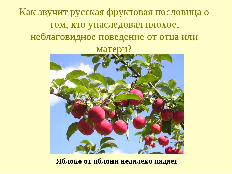 Как звучит русская фруктовая пословица о том, кто унаследовал плохое, неблаго...