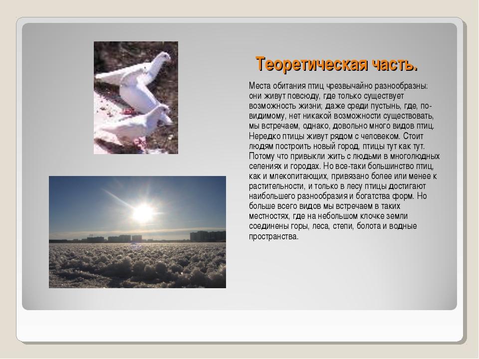 Теоретическая часть. Места обитания птиц чрезвычайно разнообразны: они живут...