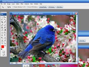 hello_html_3a789a92.jpg