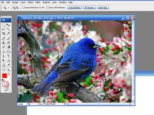 hello_html_661b0594.jpg