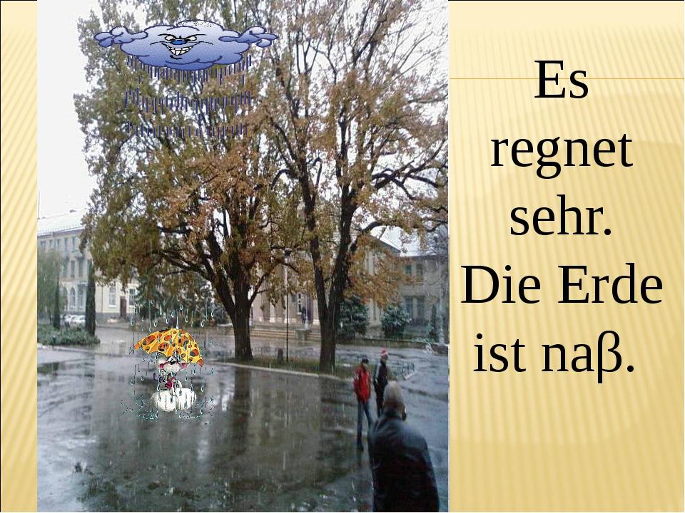 Es regnet sehr. Die Erde ist naβ.