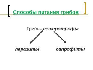 Способы питания грибов Грибы- гетеротрофы паразиты сапрофиты