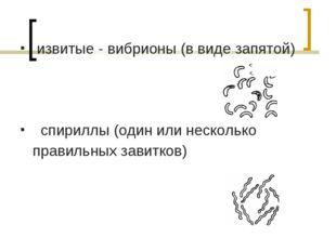 извитые - вибрионы (в виде запятой) спириллы (один или несколько правильных з