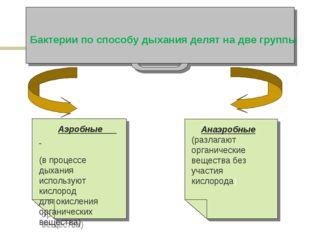 Бактерии по способу дыхания делят на две группы Анаэробные (разлагают органич