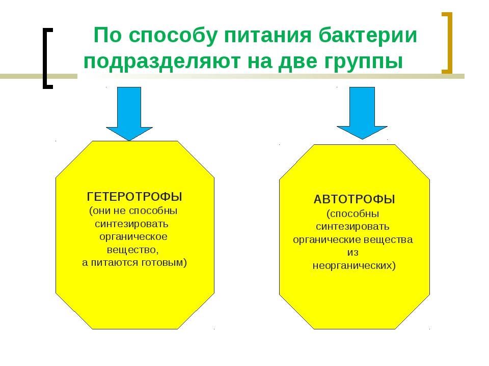 По способу питания бактерии подразделяют на две группы ГЕТЕРОТРОФЫ (они не с...