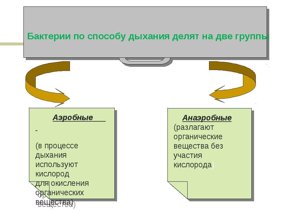 Бактерии по способу дыхания делят на две группы Анаэробные (разлагают органич...