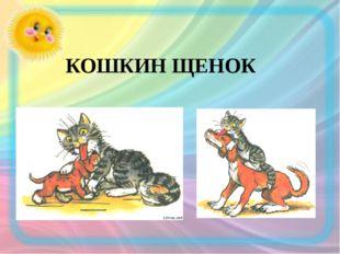 КОШКИН ЩЕНОК