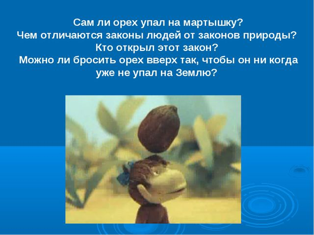 Сам ли орех упал на мартышку? Чем отличаются законы людей от законов природы?...