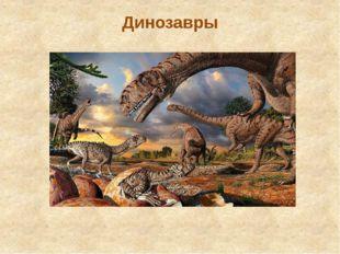 Динозавры С четырех лет я очень увлекаюсь динозаврами. Я люблю читать про них