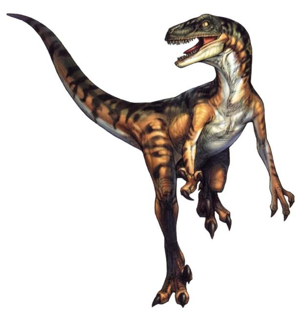 http://macroclub.ru/gallery/_data/_comfiles/30/Velociraptor.jpg