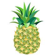 ananas19.jpg