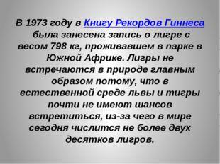В 1973 году вКнигу Рекордов Гиннесабыла занесена запись о лигре с весом798