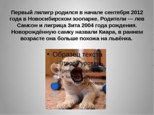 Первый лилигр родился в начале сентября 2012 года в Новосибирском зоопарке. Р