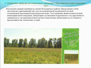 Памятник природы регионального значения «Тростниково-скрытницевый луг» Распол