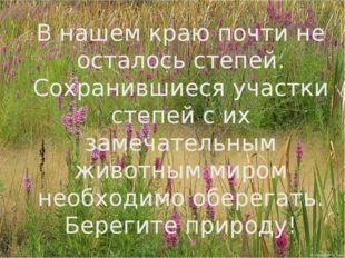 Спасибо за внимание! «Рыбе – вода, птице – воздух, зверю – лес, степь, горы.