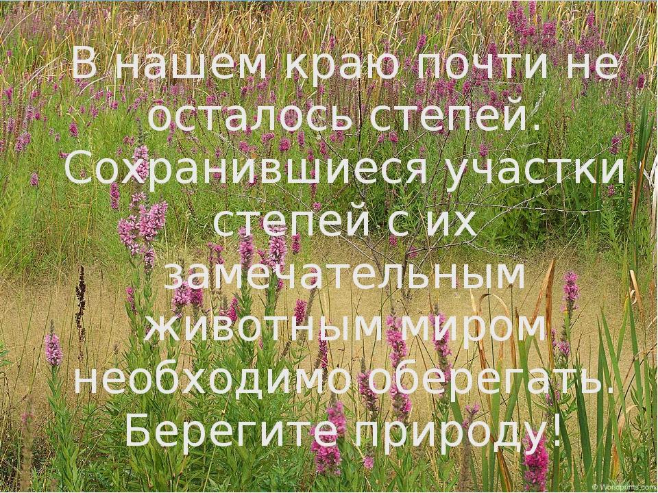 Спасибо за внимание! «Рыбе – вода, птице – воздух, зверю – лес, степь, горы....