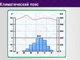 Климатический пояс 12
