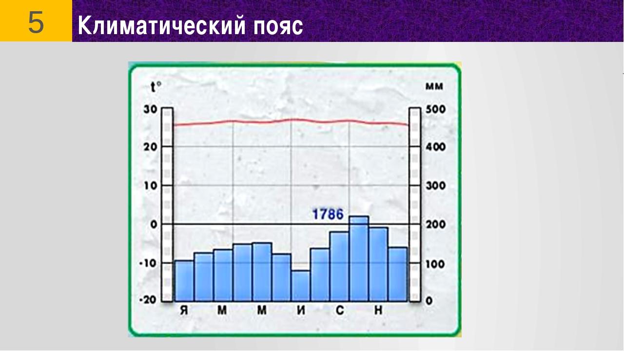 Климатический пояс 5