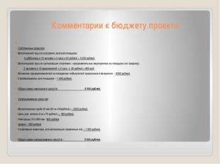 Комментарии к бюджету проекта  Собственные средства: Волонтерский труд по со