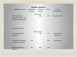 Бюджет проекта Наименование статьи Запрашиваемые средства Имеющиеся средства