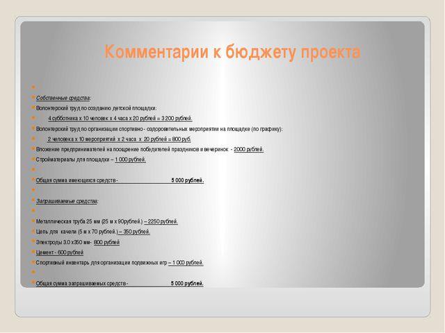 Комментарии к бюджету проекта  Собственные средства: Волонтерский труд по со...