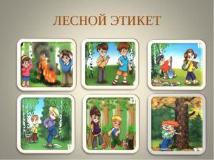 ЛЕСНОЙ ЭТИКЕТ