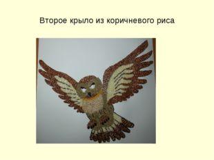 Второе крыло из коричневого риса