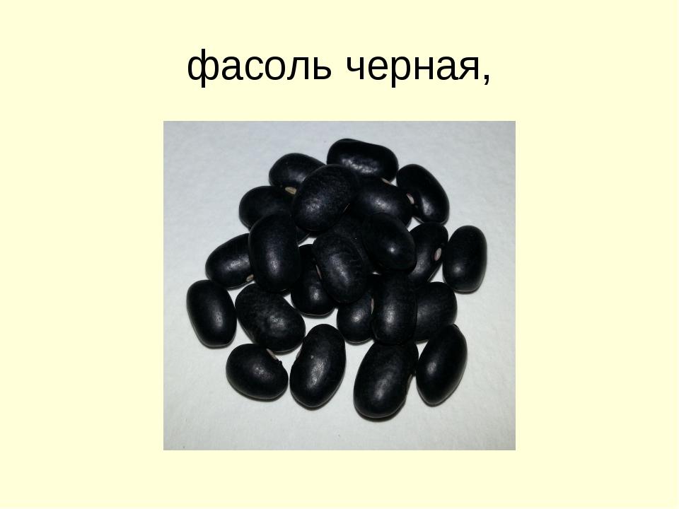 фасоль черная,