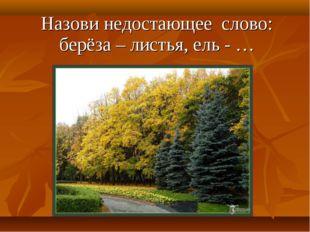 Назови недостающее слово: берёза – листья, ель - …
