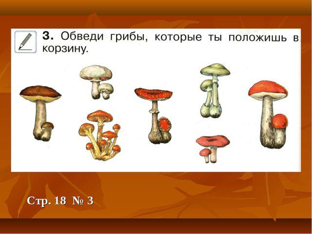 Стр. 18 № 3