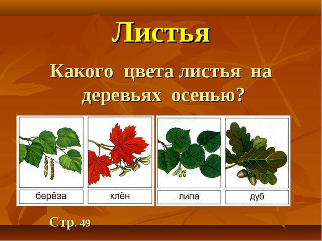 Листья Какого цвета листья на деревьях осенью? Стр. 49