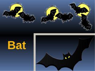 Bat Автор: Евдокимова А.В.