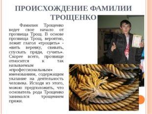 ПРОИСХОЖДЕНИЕ ФАМИЛИИ ТРОЩЕНКО Фамилия Трощенко ведет свое начало от прозви