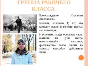 ГРУППА РАБОЧЕГО КЛАССА Происхождение Фамилии «Воловиков» Воловик, воловник 1)