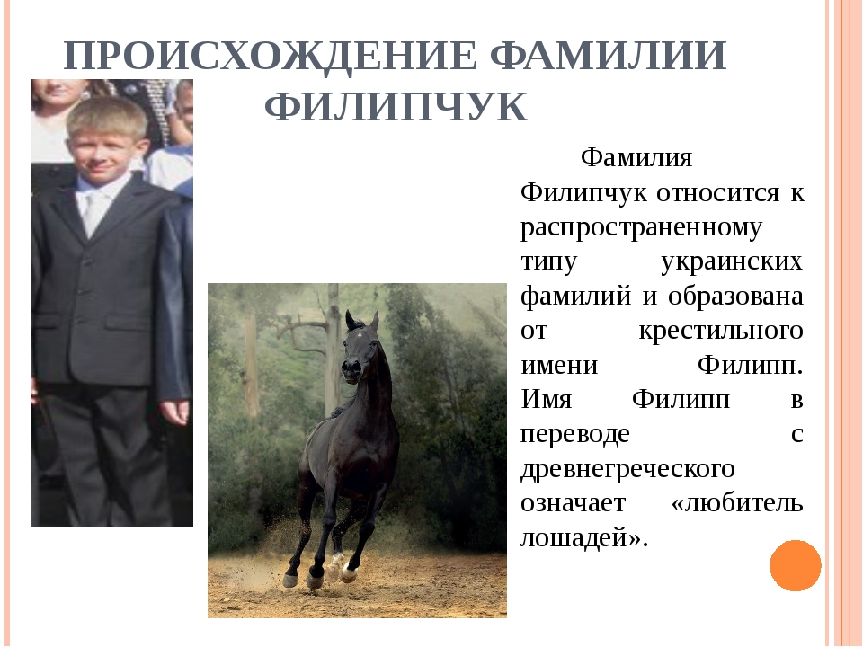 ПРОИСХОЖДЕНИЕ ФАМИЛИИ ФИЛИПЧУК Фамилия Филипчук относится к распространенно...