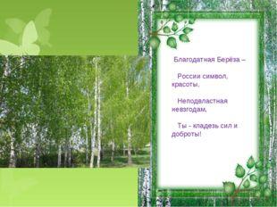 Благодатная Берёза – России символ, красоты, Неподвластная невзгодам, Ты - к