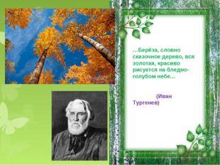 …Берёза, словно сказочное дерево, вся золотая, красиво рисуется на бледно-гол
